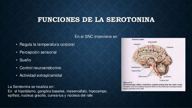 histamina-y-serotonina-5-638